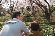 田口君背中越し花壇