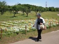 花の丘公園散歩 040