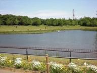 花の丘公園散歩 037