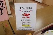 武井blogバイキング2